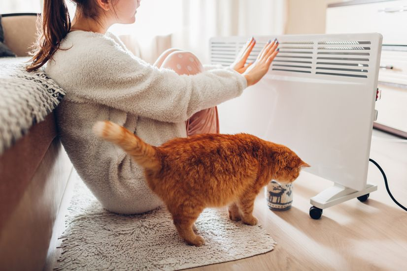 Young woman sitting next to cat and convector heater and warming her hands