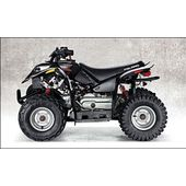 Polaris Youth Predator 50