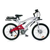 Aseako Electric Bike