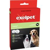 Exelpet Capstar For Medium and Large Dogs