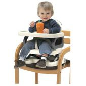 Roger Armstrong Summer Booster to Toddler Seat