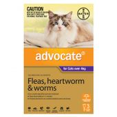 Bayer Advocate Purple (Large Cat)