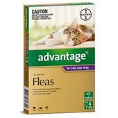 Bayer Advantage for Cats Purple (Large Cats)